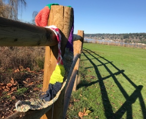 The Ugly Scarf at Lake Sammamish State Park