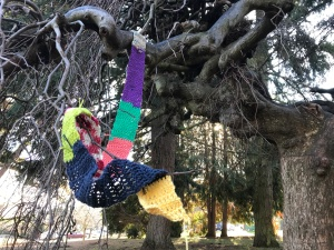 The Ugly Scarf at Ravenna Park, Seattle