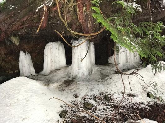 Icy stalactites