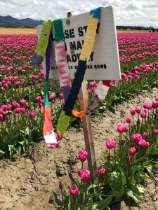 The Ugly Scarf at the Skagit Valley Tulip Festival