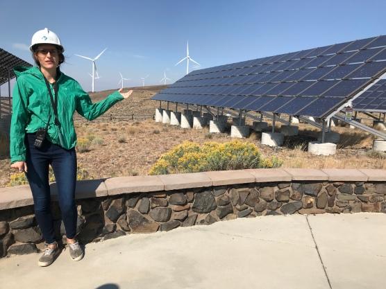 Solar panels powering Wild Horse