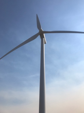 Wind turbine at Wild Horse