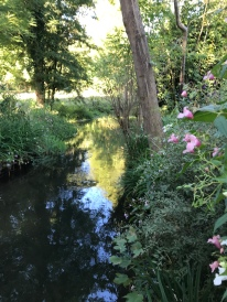 A babbling brook
