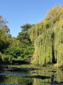 The water garden…