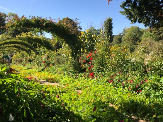 Monet's garden pathway