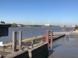 Wind turbines across the water