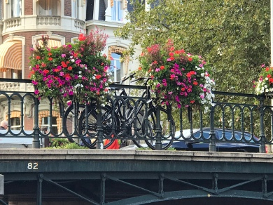 Cycles and flowers everywhere!