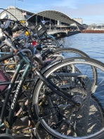 Just a few bicycles...