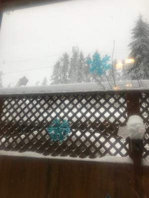 Snowing again...again...