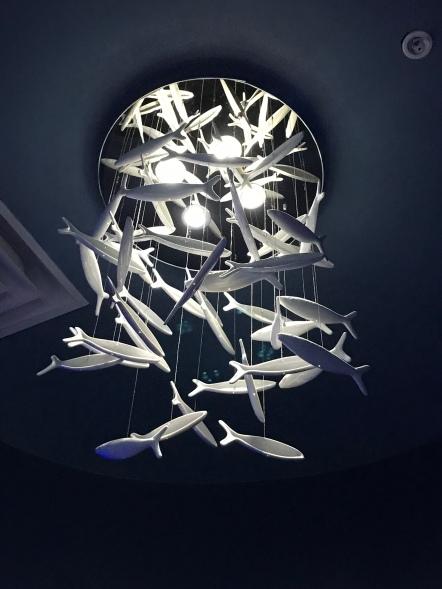An aquatic chandelier