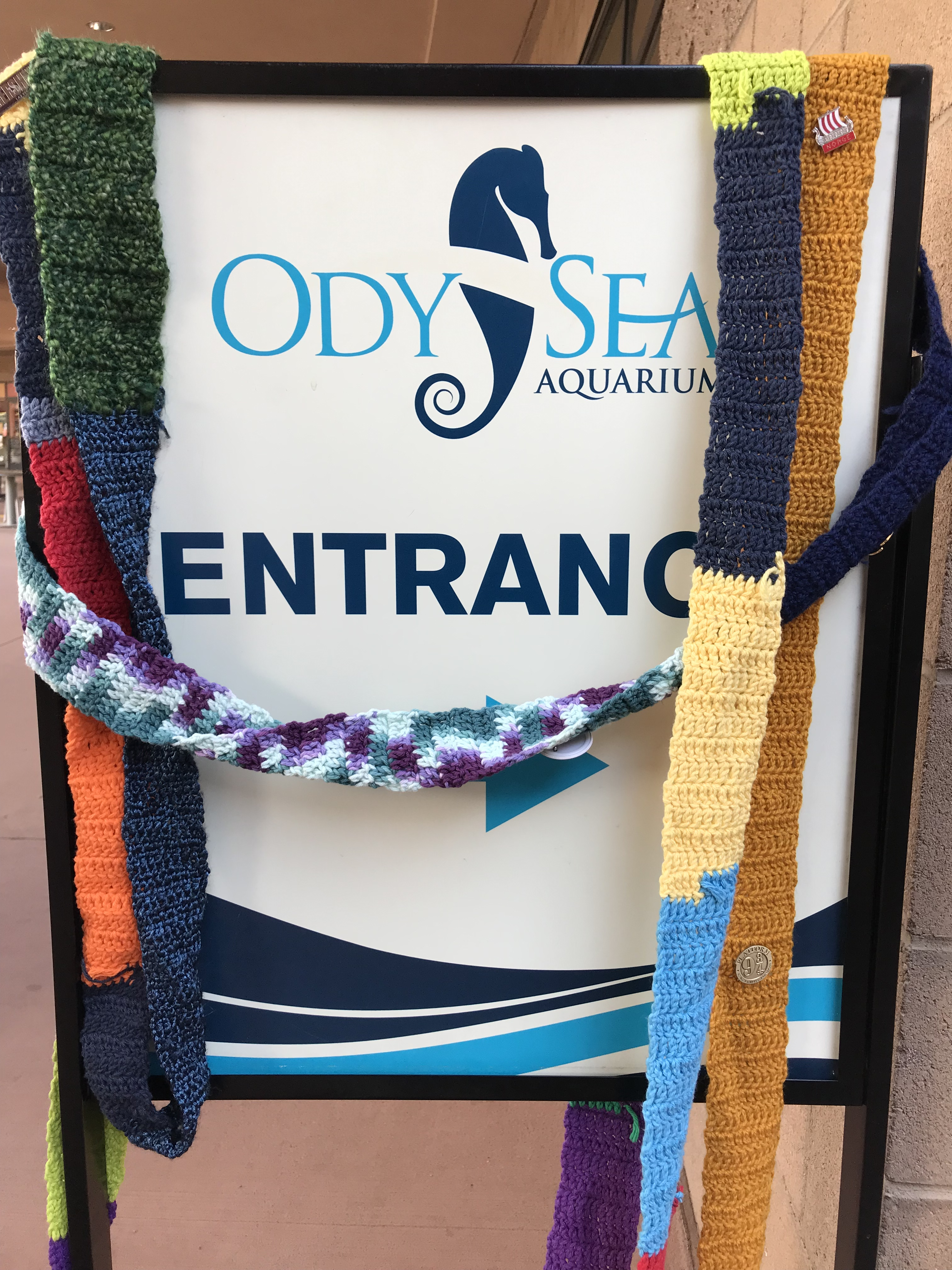 The Ugly Scarf at the OdySea Aquarium
