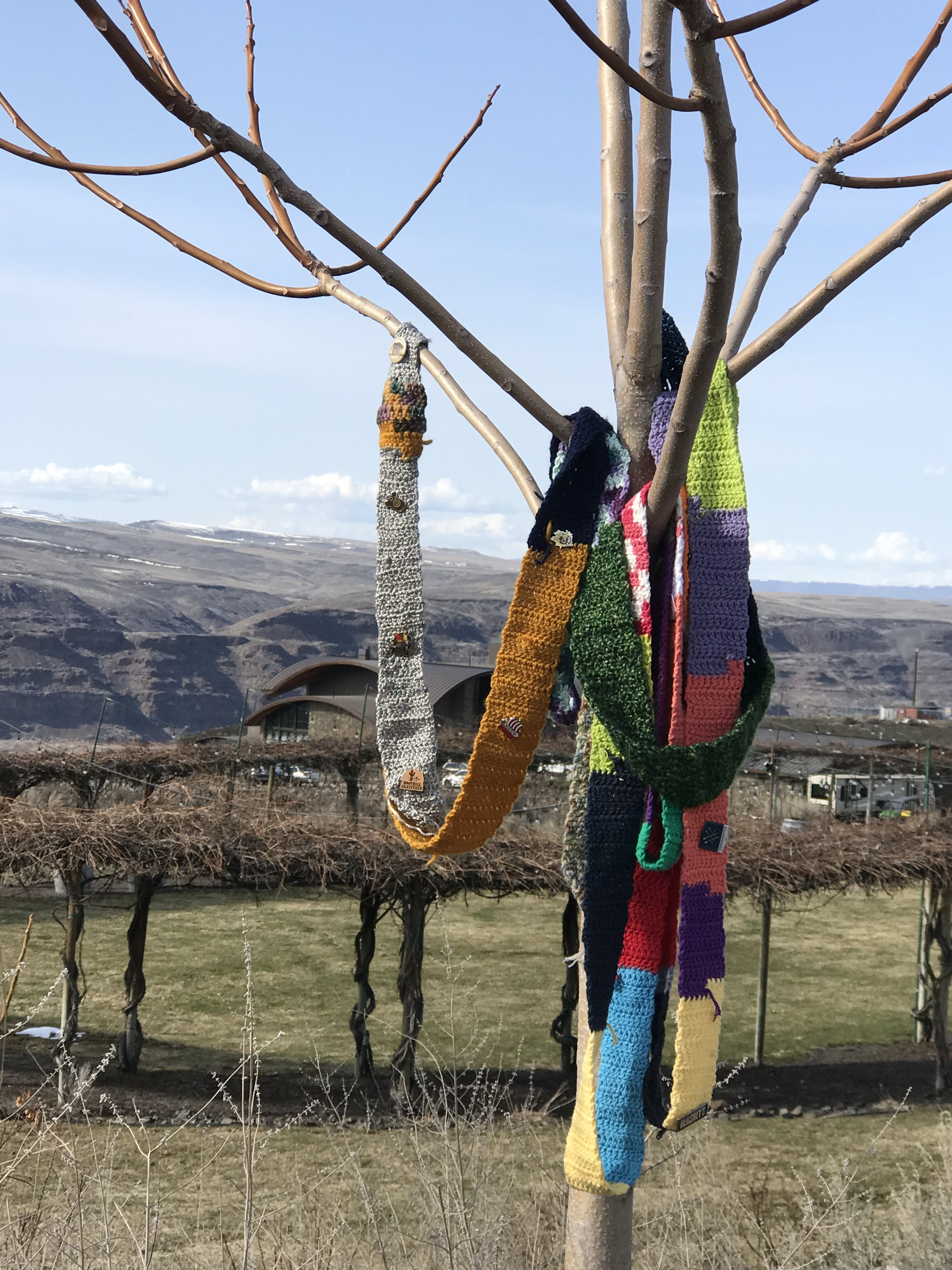 The Ugly Scarf visits Cave B Winery